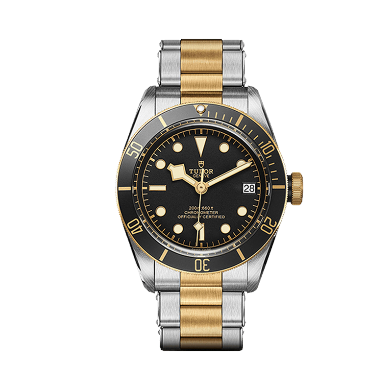 TUDOR Black Bay S&G Watch